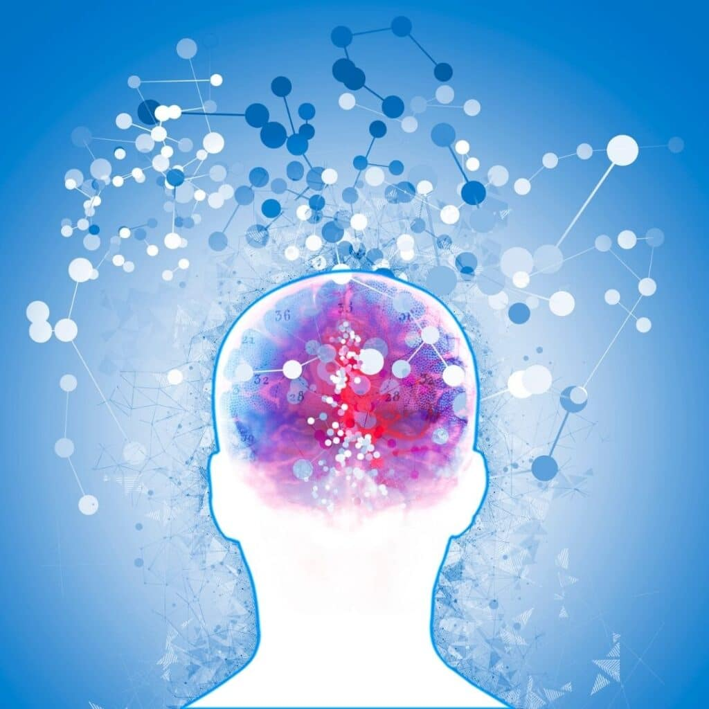 hjerne mentaltræning